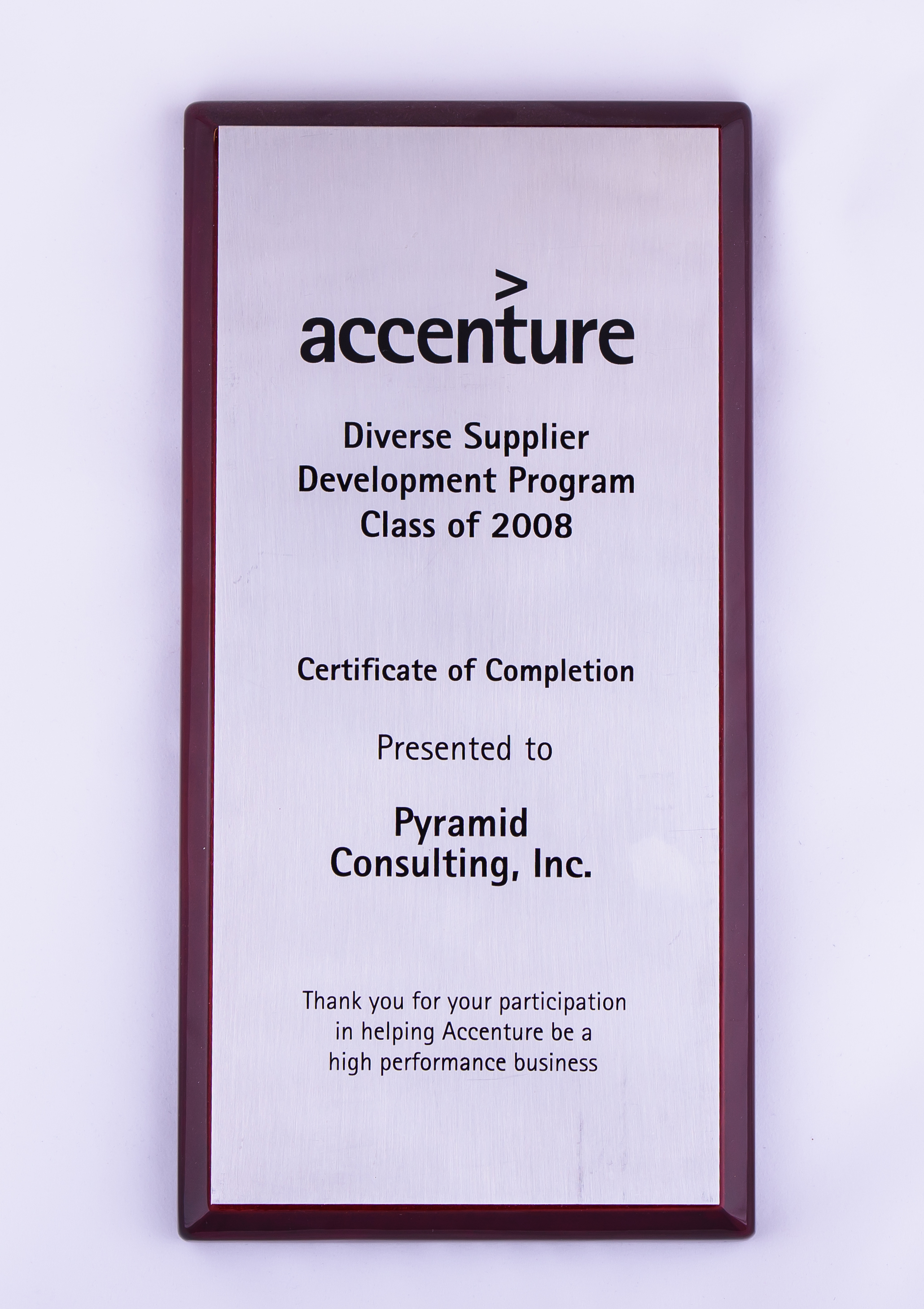2008 Diverse Supplier Development Program Certificate of Completion