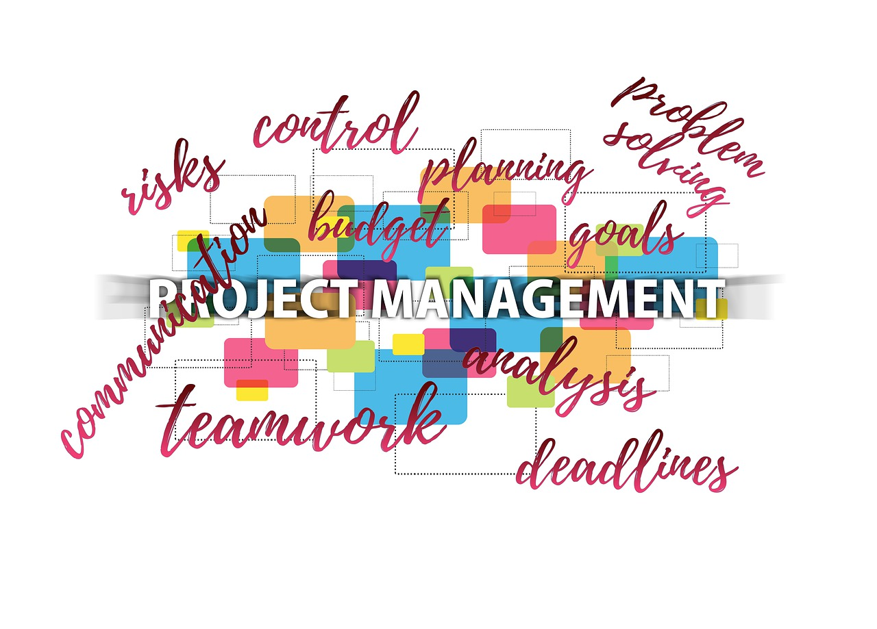 new project manager